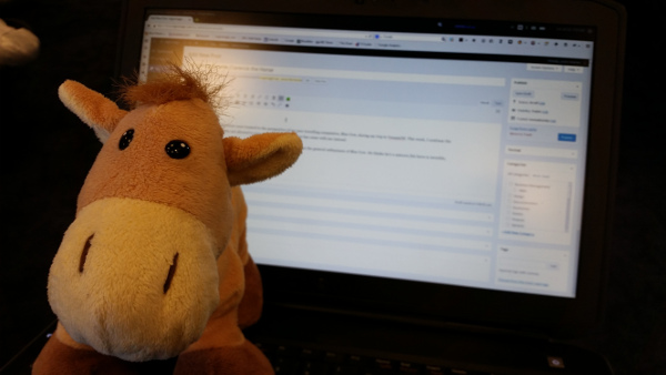 Clarence the Horse helps me write