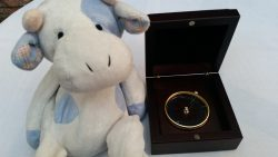 A Dell EMC compass for navigating the show. (Blue Cow for scale).
